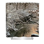 Silvered Shores Shower Curtain