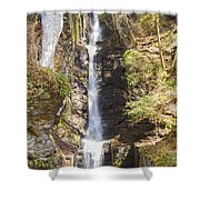 Silverthread Falls Shower Curtain