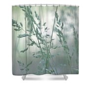 Silvery Green Grasses Shower Curtain