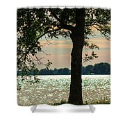 Silvery Sunset Shower Curtain