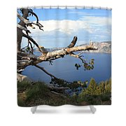 Silvery Tree Over Crater Lake Shower Curtain