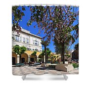 Silves In Spring Shower Curtain