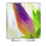 Simple Beauty Shower Curtain