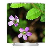 Simple Beauty II Shower Curtain