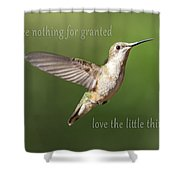 Simple Country Truths Hummingbird Shower Curtain