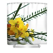 Simple Flower Shower Curtain