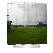 Simple Green Shower Curtain