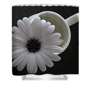 Simple White Daisy Shower Curtain