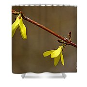 Simple Yellow Shower Curtain