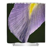 Simplicity Shower Curtain