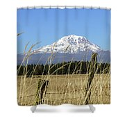 Mount Adams Shower Curtain