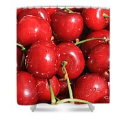 Simply Cherries  Shower Curtain