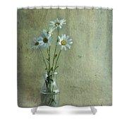 Simply Daisies Shower Curtain by Priska Wettstein