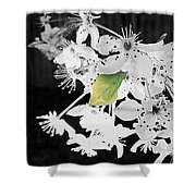 Simply Here Shower Curtain