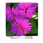 Simply Soft Pink Petals Shower Curtain