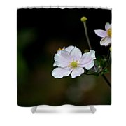 Simply Stated Shower Curtain