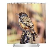 Sing Away Shower Curtain