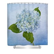 Sing Me The Blues Shower Curtain