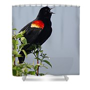 Sing Your Heart Out Shower Curtain