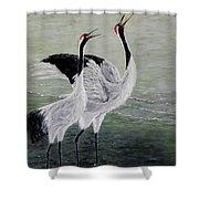 Singing Cranes Shower Curtain