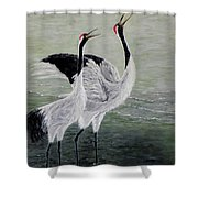 Singing Cranes Shower Curtain