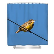 Singing On The Wire Shower Curtain