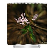 Singing Quartet And The Soloist Shower Curtain