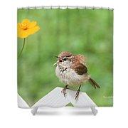 Singing Wren Shower Curtain