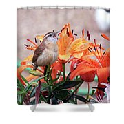 Singing Wren In The Lilies Shower Curtain