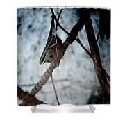 Single Bat Hanging Alone Shower Curtain