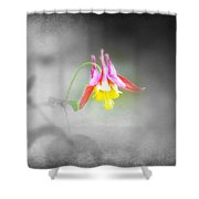 Single Columbine Shower Curtain