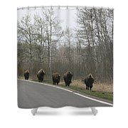 Single File Now Shower Curtain