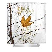 Single Leaf In Fall Shower Curtain