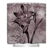 Single Lily-vintage Series  Shower Curtain