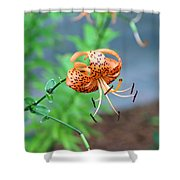 Single Orange And Black Tiger Lily Shower Curtain