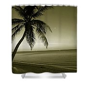Single Palm At The Beach Shower Curtain