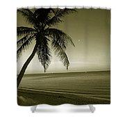 Single Palm At The Beach Shower Curtain