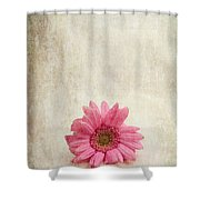 Single Pink Shower Curtain