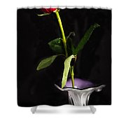 Single Red Rose In Vase Shower Curtain