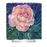 Single Rose On Clayboard Shower Curtain