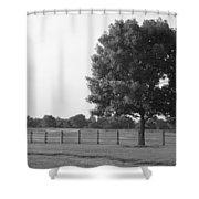 Single Tree Shower Curtain
