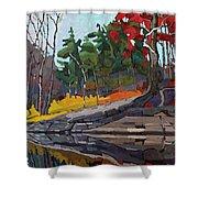 Singleton Autumn Shower Curtain