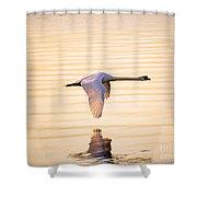 Singular Shower Curtain