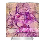 Sinjer Bald  Id 16099-090136-61941 Shower Curtain