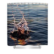 Sink And Surge Shower Curtain