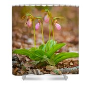 Sisters-2 Shower Curtain