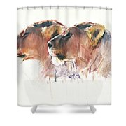 Sisters, Etosha Shower Curtain