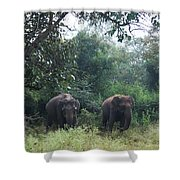 Sisters In Paradise Part 1 Shower Curtain