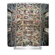 Sistine Chapel Ceiling Shower Curtain