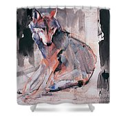 Sitting Wolf Shower Curtain